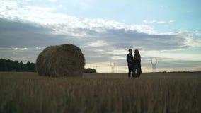 Όμορφοι τύπος και κορίτσι που αγκαλιάζουν και που φιλούν Φωτογραφία ιστορίας αγάπης σε υπαίθριο στο φως ηλιοβασιλέματος αγάπη ζευ απόθεμα βίντεο