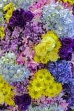Όμορφοι φρέσκοι διαφορετικοί τύποι των ζωηρόχρωμων διακοσμημένων λουλούδια GA στοκ φωτογραφία με δικαίωμα ελεύθερης χρήσης