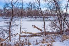 Όμορφοι χιονώδεις παγωμένοι χειμερινοί ποταμός και δάσος - στην εθνική περιοχή άγριας φύσης κοιλάδων Μινεσότας - ηλιόλουστη ημέρα στοκ φωτογραφία με δικαίωμα ελεύθερης χρήσης
