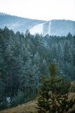 Όμορφος άσπρος χιονώδης χειμώνας στα ομιχλώδη βουνά σκι Στοκ Εικόνες