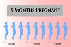 Όμορφος έγκυος, 9 μήνες Στοκ φωτογραφία με δικαίωμα ελεύθερης χρήσης