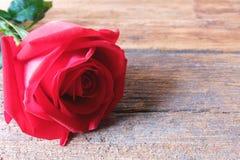 Όμορφος ένας κόκκινος αυξήθηκε στο ξύλινο υπόβαθρο Valentine' έννοια ημέρας του s στοκ φωτογραφίες