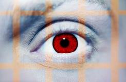 Όμορφος ένας οξυδερκής φαίνεται μάτι Κλείστε αυξημένος στοκ φωτογραφία με δικαίωμα ελεύθερης χρήσης