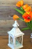 Όμορφος λαμπτήρας κηροπηγίων και κίτρινες τουλίπες λουλουδιών, φρέσκια φύση Στοκ φωτογραφία με δικαίωμα ελεύθερης χρήσης