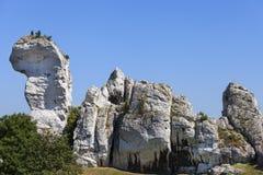Όμορφος βράχος ασβεστόλιθων στο πολωνικό ιουρασικό υψίπεδο Κρακοβία-Czestochowa ορεινών περιοχών, Πολωνία στοκ φωτογραφία με δικαίωμα ελεύθερης χρήσης
