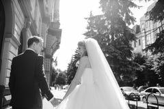 όμορφος γάμος ζευγών Στοκ εικόνα με δικαίωμα ελεύθερης χρήσης