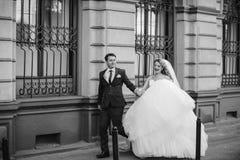 όμορφος γάμος ζευγών Στοκ φωτογραφίες με δικαίωμα ελεύθερης χρήσης