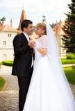 όμορφος γάμος ζευγών Στοκ εικόνες με δικαίωμα ελεύθερης χρήσης