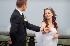 όμορφος γάμος ζευγών Στοκ Εικόνα
