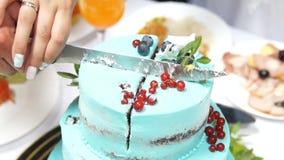 όμορφος γάμος κέικ φιλμ μικρού μήκους