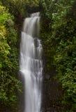 Όμορφος γαλήνιος καταρράκτης σε Maui στοκ φωτογραφία