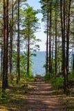 Όμορφος δείτε το τοπίο σε Saaremaa, Εσθονία στοκ φωτογραφία με δικαίωμα ελεύθερης χρήσης