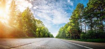 Όμορφος δρόμος ανατολής στο δάσος Στοκ εικόνες με δικαίωμα ελεύθερης χρήσης