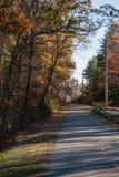 Όμορφος δρόμος με τα δέντρα στοκ φωτογραφία