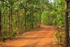 Όμορφος δρόμος στο δάσος στο birbhum στοκ φωτογραφία