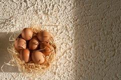 όμορφος λεκές διακοπών αυγών Πάσχας ανασκόπησης σύνολο κόσκινων των αυγών Πάσχας αγροτικό σε ξύλινο Στοκ εικόνες με δικαίωμα ελεύθερης χρήσης