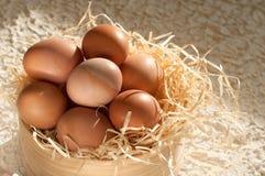 όμορφος λεκές διακοπών αυγών Πάσχας ανασκόπησης σύνολο κόσκινων των αυγών Πάσχας αγροτικό σε ξύλινο Στοκ φωτογραφία με δικαίωμα ελεύθερης χρήσης