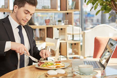 Όμορφος επιχειρηματίας που έχει το μεσημεριανό γεύμα Στοκ Εικόνες