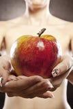 όμορφος εύγευστος μήλω&nu Στοκ φωτογραφία με δικαίωμα ελεύθερης χρήσης