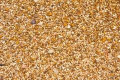 Όμορφος, ζωηρόχρωμος τοίχος πετρών με Στοκ Εικόνα