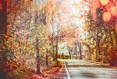 Όμορφος ηλιόλουστος δρόμος φθινοπώρου με τα κόκκινα δέντρα φυλλώματος πτώσης Στοκ εικόνα με δικαίωμα ελεύθερης χρήσης