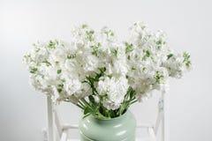 Όμορφος θάμνος Mattioli ανθοδεσμών άσπρος μέσα στο εκλεκτής ποιότητας χρώμα μεντών βάζων ζωηρόχρωμο λουλούδι μιγμάτων Στοκ εικόνες με δικαίωμα ελεύθερης χρήσης