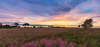Όμορφος θεαματικός ουρανός ηλιοβασιλέματος πέρα από τα λιβάδια και τους τομείς Στοκ εικόνες με δικαίωμα ελεύθερης χρήσης