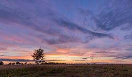 Όμορφος θεαματικός ουρανός ηλιοβασιλέματος πέρα από τα λιβάδια και τους τομείς Στοκ φωτογραφίες με δικαίωμα ελεύθερης χρήσης