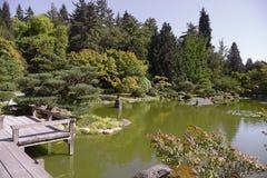 Όμορφος ιαπωνικός κήπος φθινοπώρου στο Σιάτλ Στοκ Φωτογραφία