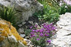 όμορφος κήπος λουλουδιών λεπίδων ανασκόπησης Στοκ φωτογραφίες με δικαίωμα ελεύθερης χρήσης