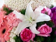 όμορφος κήπος λουλου&delt στοκ εικόνες με δικαίωμα ελεύθερης χρήσης