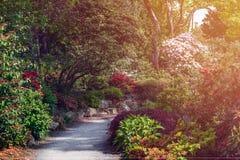 Όμορφος κήπος με τα ανθίζοντας δέντρα κατά τη διάρκεια του χρόνου άνοιξη στοκ φωτογραφία με δικαίωμα ελεύθερης χρήσης