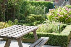 Όμορφος κήπος με τις αειθαλείς εγκαταστάσεις πυξαριού στοκ φωτογραφία