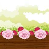 Όμορφος κήπος με το τοπίο λουλουδιών ελεύθερη απεικόνιση δικαιώματος