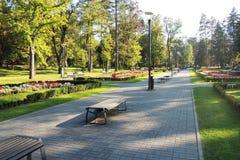 όμορφος κήπος λουλουδιών λεπίδων ανασκόπησης Στοκ Εικόνες