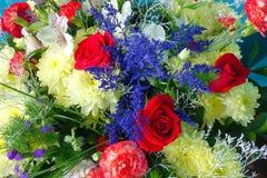 όμορφος κήπος λουλουδιών λεπίδων ανασκόπησης Στοκ Φωτογραφίες