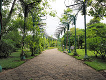 όμορφος κήπος Πράσινος χορτοτάπητας στον εξωραϊσμένο επίσημο κήπο Πάρκο AR Στοκ Εικόνες