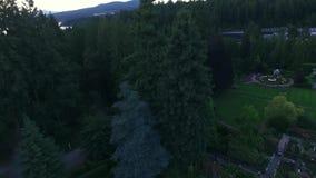 Όμορφος κήπος στην Αλάσκα απόθεμα βίντεο