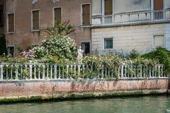 Όμορφος κήπος στο μεγάλο κανάλι στη Βενετία, Ιταλία Στοκ φωτογραφία με δικαίωμα ελεύθερης χρήσης