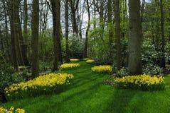όμορφος κήπος Στοκ Φωτογραφία