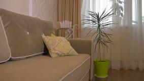 Όμορφος καναπές στο καθιστικό απόθεμα βίντεο