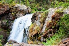 Όμορφος καταρράκτης πάρκων Yellowstone εθνικός με τους βράχους και τα πανέμορφα χρώματα βρύου και δασωδών περιοχών στοκ εικόνες