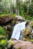 Όμορφος καταρράκτης πάρκων Yellowstone εθνικός με τους βράχους και τα πανέμορφα χρώματα βρύου και δασωδών περιοχών στοκ φωτογραφίες