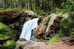 Όμορφος καταρράκτης πάρκων Yellowstone εθνικός με τους βράχους και τα πανέμορφα χρώματα βρύου και δασωδών περιοχών στοκ φωτογραφίες με δικαίωμα ελεύθερης χρήσης