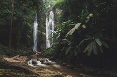 Όμορφος καταρράκτης στο πράσινο δάσος στη ζούγκλα Στοκ φωτογραφία με δικαίωμα ελεύθερης χρήσης