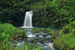 Όμορφος καταρράκτης της Χαβάης, ΗΠΑ σε μια πολύβλαστη, πράσινη ρύθμιση Στοκ εικόνα με δικαίωμα ελεύθερης χρήσης