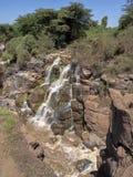 Όμορφος καταρράκτης των καταρρακτών Awash, Αιθιοπία στοκ εικόνες