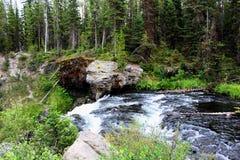 Όμορφος κολπίσκος πάρκων Yellowstone εθνικός με τους βράχους και τα πανέμορφα χρώματα βρύου και δασωδών περιοχών στοκ φωτογραφίες