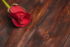 Όμορφος κόκκινος αυξήθηκε στον ξύλινο πίνακα, ρομαντικό υπόβαθρο, copyspace Στοκ εικόνα με δικαίωμα ελεύθερης χρήσης