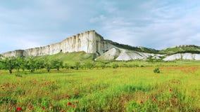 Όμορφος κόκκινος τομέας παπαρουνών κοντά στον υψηλό άσπρο απότομο βράχο στη θερινή ημέρα ενάντια στον γκρίζο νεφελώδη ουρανό E Κα απόθεμα βίντεο